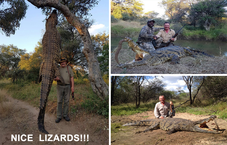 Tally-Ho Hunting Safaris - newsletter April 2017